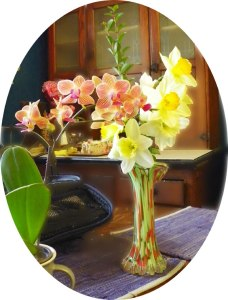 Orchids (from Walmart) and Daffodils (from my garden).